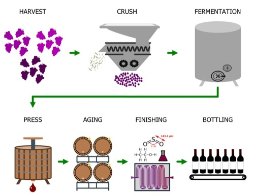 wine making process Find wine-making stock images in hd and millions of other royalty-free stock photos,  thin line icons of process of producing good wine and storage.