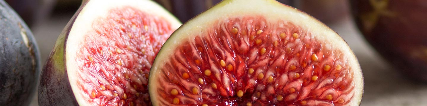 The cross-section of a fig.