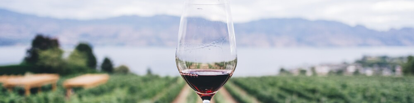 Single glass of red wine with vineyard and lake views blurred in the background