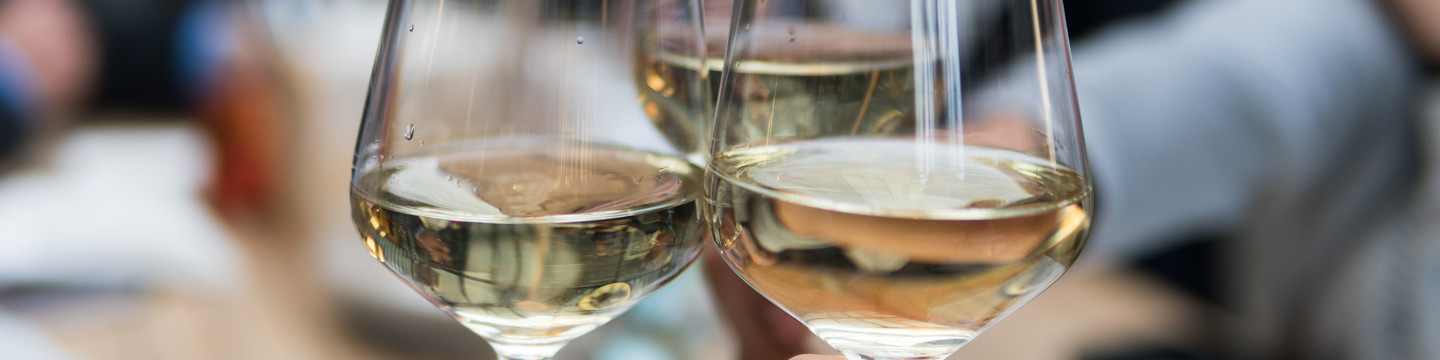 Close-up of three glasses of Chardonnay clinking together.